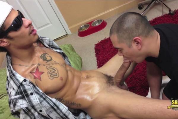 sexe royan gay arabe beur