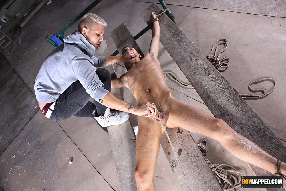 image Cum hungry boys reece and parker suck dick
