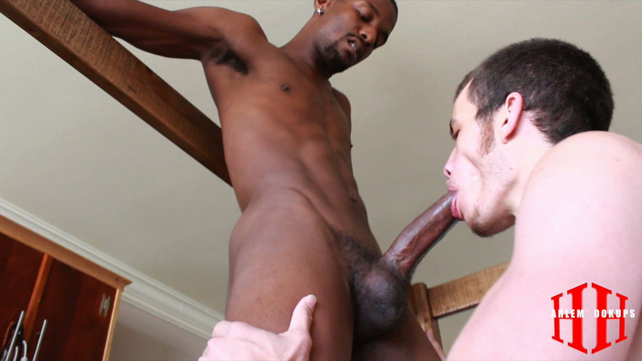Free gay porno photos and nude pictures
