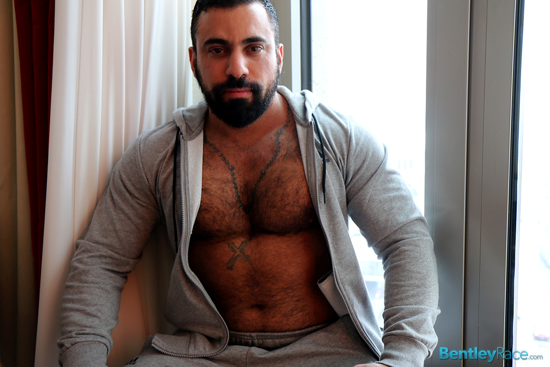 Ares Gay 77