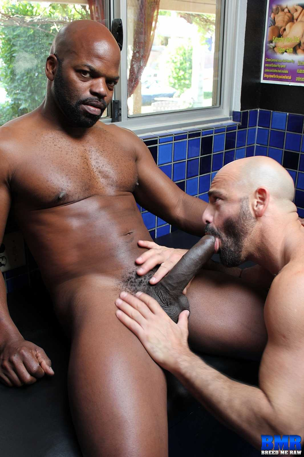 Adam Ruso Porn cutler x and adam russo | breed me raw | gaymobile.fr
